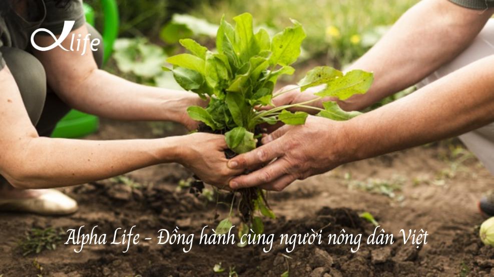 Alpha Life Đồng Hành Cùng Người Nông Dân Việt