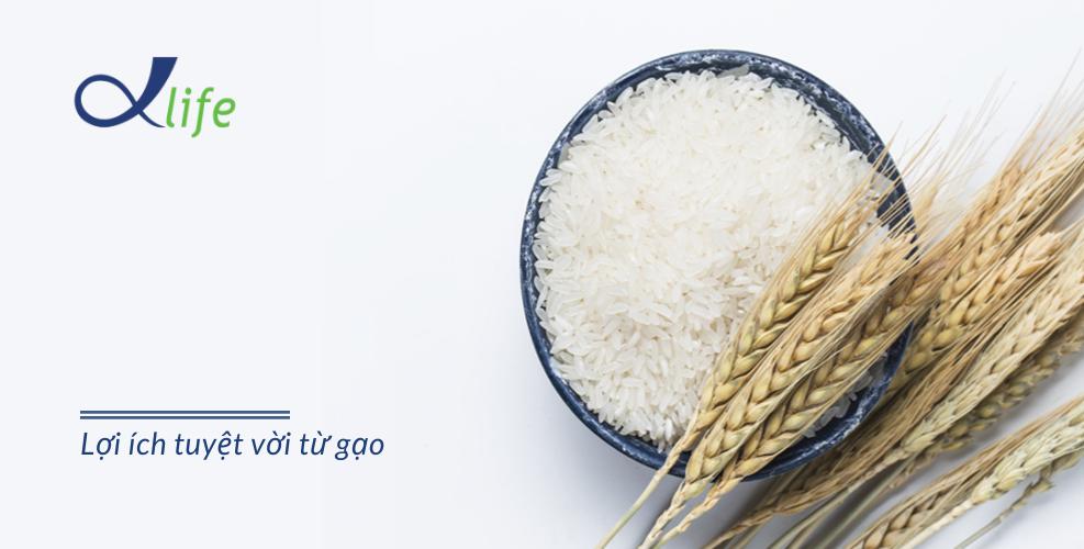 Gạo và những lợi ích tuyệt vời