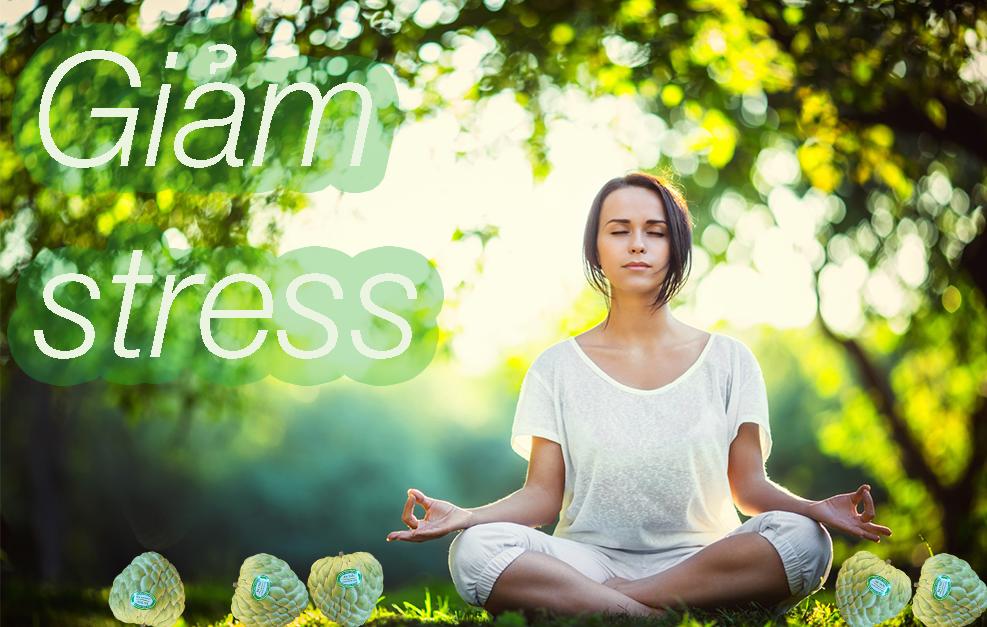 Na hỗ trợ giảm stress